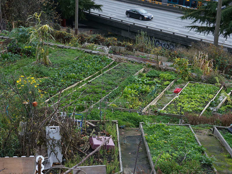 Yesler Garden