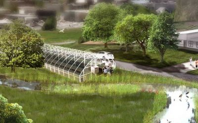 Vision for a greener First Hill community